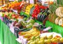 Epidemie slábne, lidé po dlouhé době mohou zajít na farmářské trhy. Začíná se už v pátek v Žatci