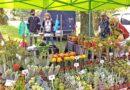 Milovníci zahrádek a květin se dočkají: v Lounech po dlouhé pauze tento pátek začne první letošní výstava